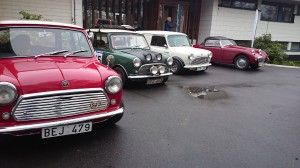 Minis and frog